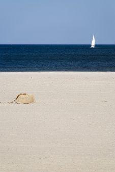 Free Beach Stock Image - 5631641