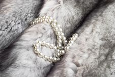 Free Fur And Pearls Royalty Free Stock Images - 5631869