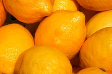Free Lemons Stock Photos - 5631973