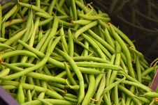 Free Green Beans Stock Images - 5631994