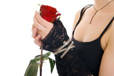 Free Hands With Rose Royalty Free Stock Photography - 5632567