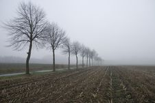 Free Foggy Field Royalty Free Stock Photos - 5632778