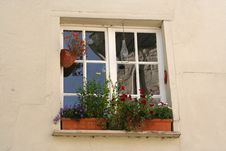 Free Window With Flowers Royalty Free Stock Image - 5633466