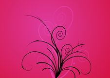 Free Flowers On Pink Background. Royalty Free Stock Photos - 5634288