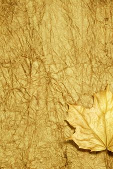 Free Golden Autumn Background Royalty Free Stock Photo - 5635115