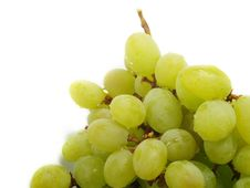 Free Isolated Bunch Of Grapes Royalty Free Stock Photo - 5635525