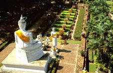 Free Row Of Buddha Statues With Yellow And Orange Cape Royalty Free Stock Photos - 5639148