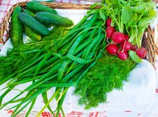 Free Green Onions, Radishes And Cucumbers On A Table Stock Photo - 56323710