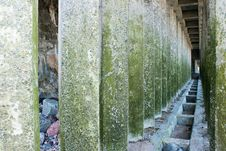 Free Corridor Of Green Concrete Pillars Royalty Free Stock Photography - 56323907