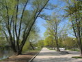 Free Alley In Park, Spring. Royalty Free Stock Images - 5643719