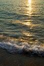 Free Dawn At The Beach Royalty Free Stock Photos - 5646838