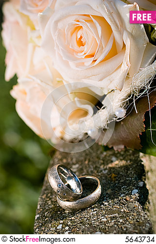 Wedding Rings Free Stock Photos Images 5643734