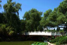 Free Bridge Stock Images - 5640204