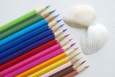 Colour Pencils And Shells Royalty Free Stock Image