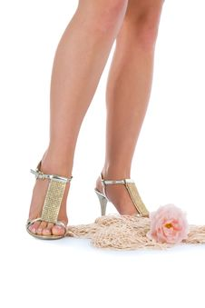 Long Legs On High Heels Stock Photography