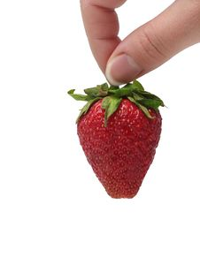 Free The Strawberry In Woman S Hand Royalty Free Stock Photos - 5642528