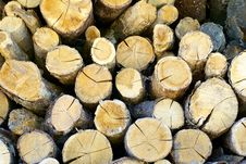 Free Fire Wood Stock Photography - 5643102