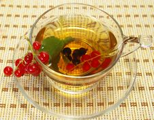 Free Red Currant And Tea In A Transparent Cup Royalty Free Stock Photo - 5644805