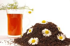 Free Camomile Tea Royalty Free Stock Photography - 5645117