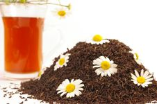 Free Black Tea And Camomile Royalty Free Stock Images - 5645119