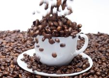 Coffee Beans Falling Into The Cup Royalty Free Stock Photos