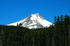 Free Snowcapped Mt Hood Stock Image - 5646241