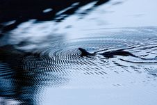 Copperhead Ripples Stock Photography