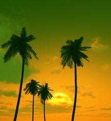 Free Beautiful Sunset Stock Photos - 5647063