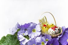 Free Easter Decoration Stock Images - 5647354