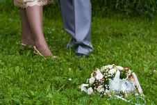Free Groom And The Bride Stock Photos - 5647433