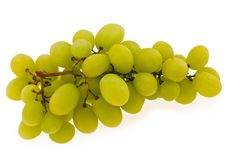 Free Autumn Grapes Stock Photography - 5648292
