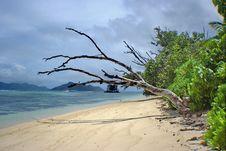 Wild Coast, Tropical Islands Stock Photos