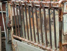 Free Calf Table Stock Photos - 5648803