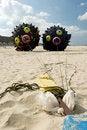 Free Black Kites Stock Photo - 5652920