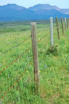 Free Fence Of A Farm Stock Photos - 5650523
