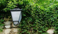 Free Lantern Stock Photography - 5651022