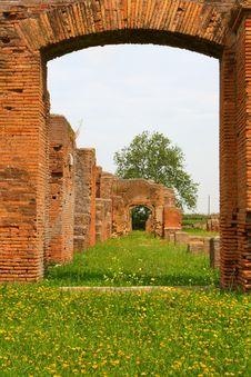 Free Ostia Stock Images - 5651424