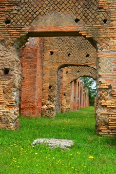 Free Ostia Royalty Free Stock Photography - 5651427