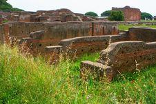 Free Ostia Stock Images - 5651574
