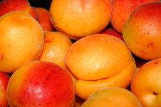 Free Apricots Stock Image - 5652411