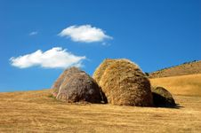 Free Dry Haystacks Royalty Free Stock Photos - 5652528