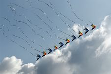 Free Lined Up Kites In The Sky Royalty Free Stock Photo - 5652865