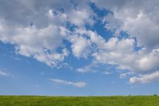 Free Green Grass And  Blue Sky Royalty Free Stock Photo - 5652875