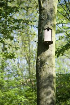 Free Bird House Stock Images - 5652984
