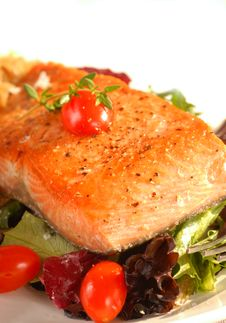 Free Seared Salmon On A Bed Of Greens With Tomato Stock Images - 5653444