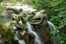 Free Sprinkler Of Dragon Royalty Free Stock Images - 5654499