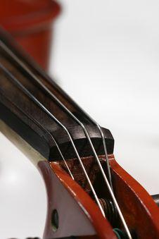 Free Violin Royalty Free Stock Photos - 5655438