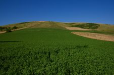Free Grassland, Umbria Stock Image - 5656681