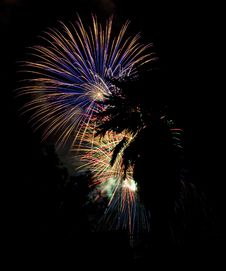 Free California Fireworks Royalty Free Stock Image - 5657426