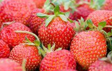 Close-up Strawberries Stock Photos